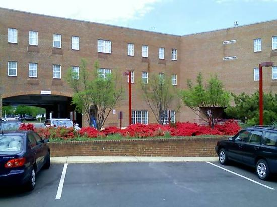 Comfort Inn Ballston: Spring at the CI Arlington