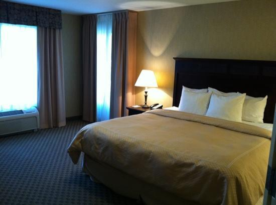 Comfort Suites Park Place: large bed corner room