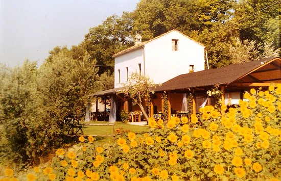 Country House Il Girasole