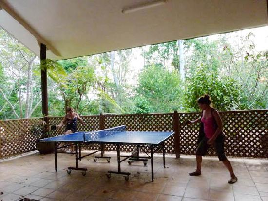 Bushland Cottages & Lodge: New! at the Lodge - table tennis