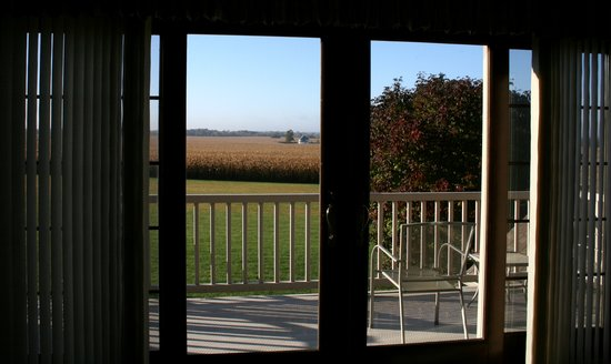 Grannys Farm Bed & Breakfast: Morning View from the Loft