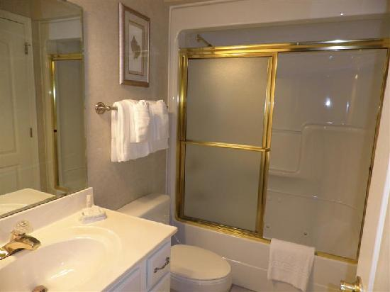 French Quarter: bathroom with shower over bath