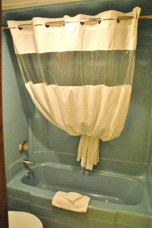 Foothills Inn: Shower