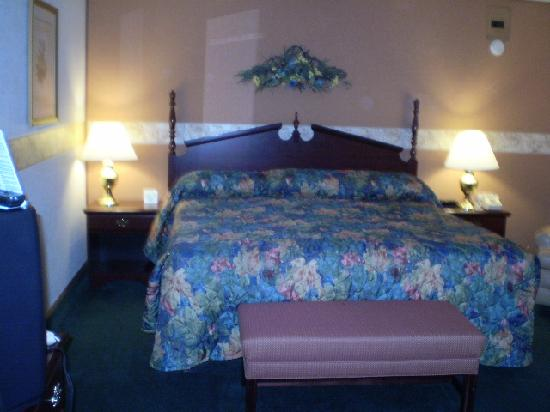 Askwith Lockview Motel: Cabin King Bed