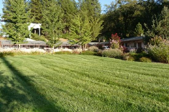 Mother Lode Motel: Nice lawn and garden area. Pick-up after your pooch. Credit Barbara L Steinberg 2011