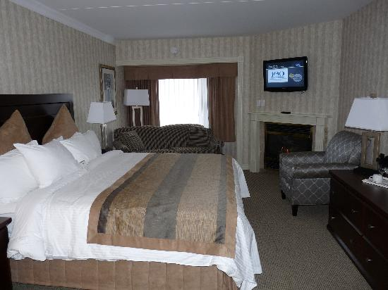BEST WESTERN PLUS Brant Park Inn &amp; Conference Centre: Fireplace Room