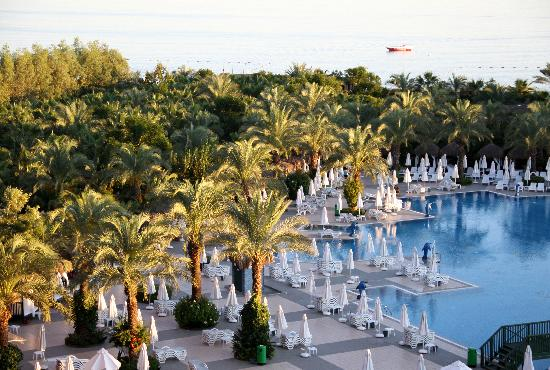Delphin Palace Hotel: Pool.