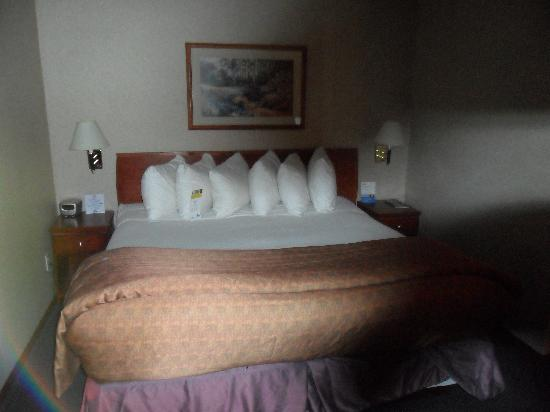 Days Inn - Vancouver Airport: King Size Bed