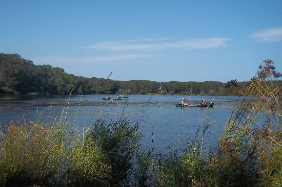 Brewster, Массачусетс: Their peaceful pond