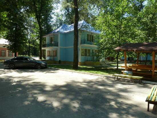 Bed and breakfasts in Vadul lui Voda
