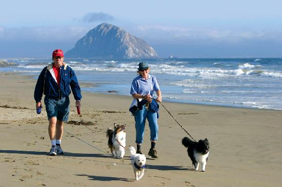 Morro Bay, CA: Discover Unspoiled Beaches