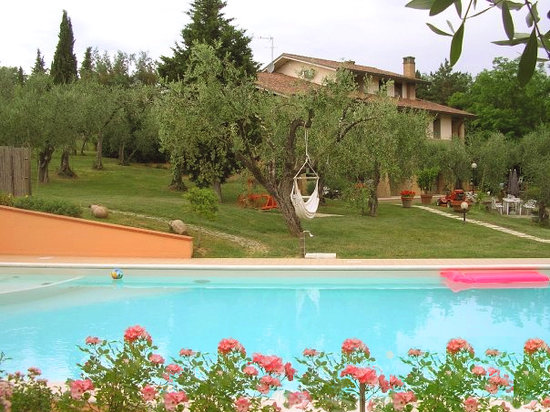 Toscana Olivanda Bed and Breakfast dalla piscina
