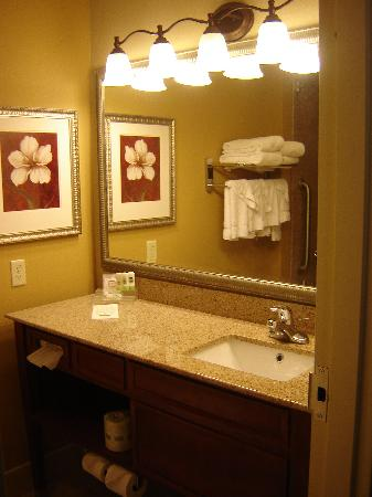 Country Inn & Suites Harrisburg-Union Deposit: Bathroom