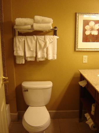 Country Inn & Suites Harrisburg-Union Deposit: Toilet