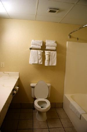 Country Inn & Suites by Carlson, Rapid City: bathroom room 403