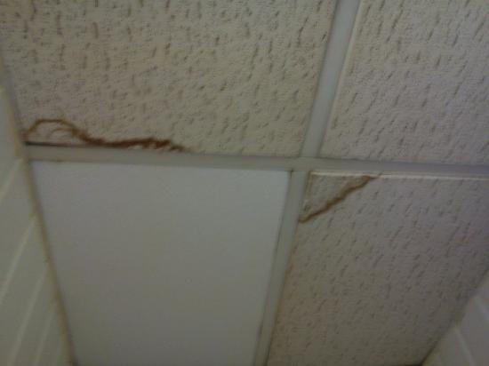 The Blue Dragon Hotel: mouldy ceiling tiles