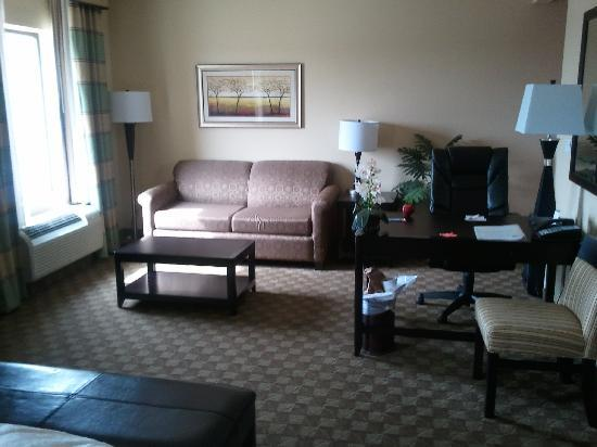 Hampton Inn & Suites McAlester: sitting area