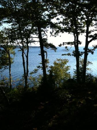Boulder Cove Cottages: View from the deck.