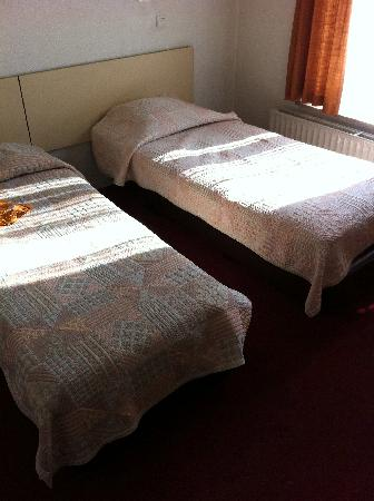 Hotel Windsor: Simple bed arrangement