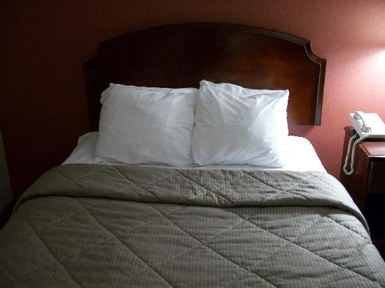 Comfort Inn: Same old bedspreads