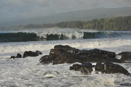 Sooke, Kanada: Crashing Surf
