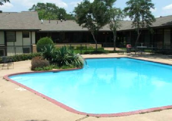 Americas Best Value Inn: pool