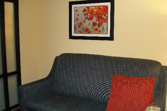 Comfort Suites Altoona: sofa