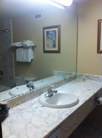 Holiday Inn Louisville East - Hurstbourne: bathroom
