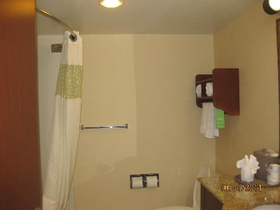 Hampton Inn & Suites Alexandria Old Town Area South: Bathroom 1