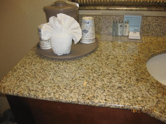 Hampton Inn & Suites Alexandria Old Town Area South: Face Basin