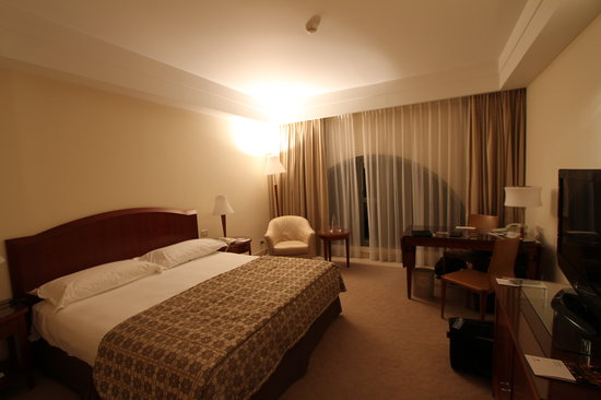 The David Citadel Hotel: Room