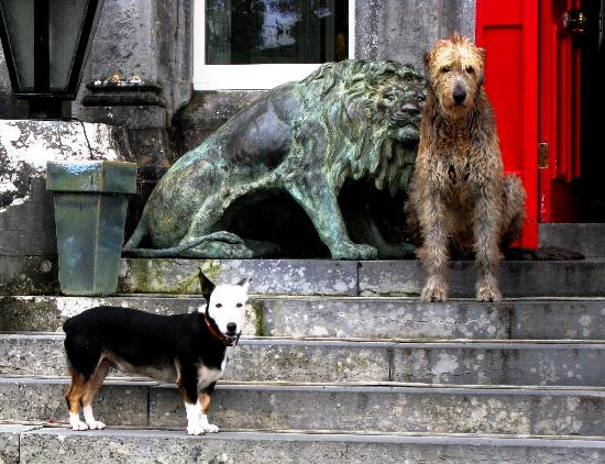 Ballyseede Castle: Arthur and Einstein