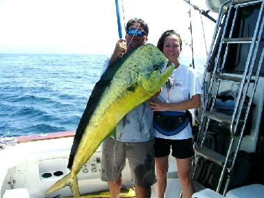One in a lifetime Mahi mahi