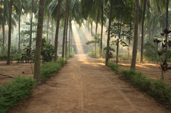 Photo of Nc Gardens & Beach Resort Malappuram