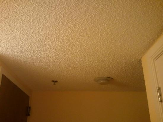 Fort Lauderdale Marriott North: Low popcorn ceilings