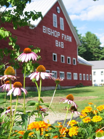 Bishop Farm Bed and Breakfast: Barn of Bishop Farm