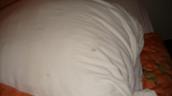 Quality Inn & Suites Hershey: Dirty Pillowcase left on bed