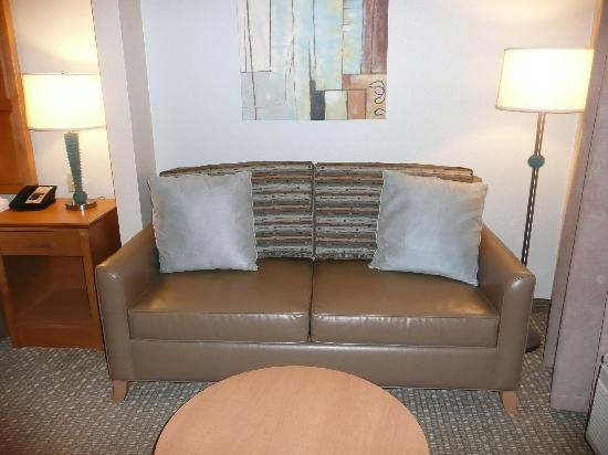 Holiday Inn Express Hotel & Suites: couch