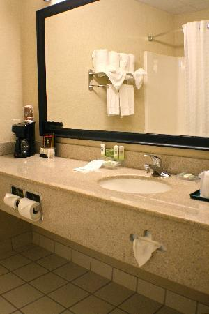 Country Inn &amp; Suites Knoxville-West: Guest Room Bathroom