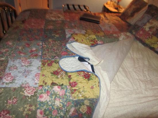 ‪‪The Cypress Inn at Conway Myrtle Beach‬: Bedspread