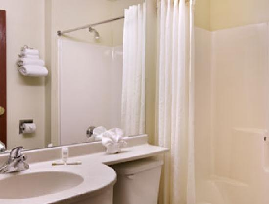 Microtel Inn & Suites by Wyndham Holland: Bathroom