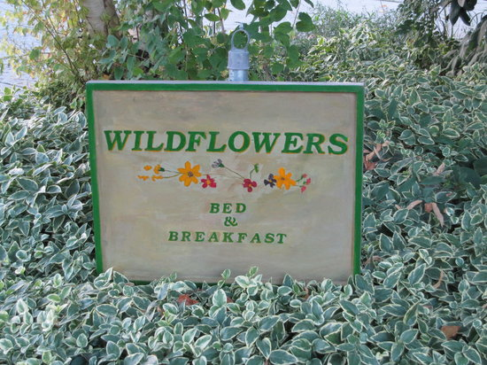 Wildflowers Bed and Breakfast