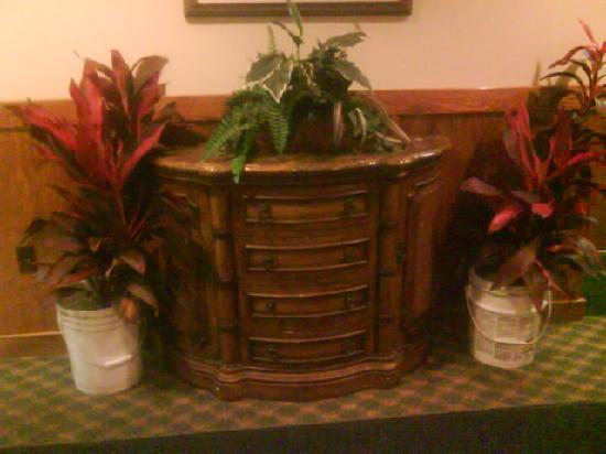 Port Clinton, OH: Plants in the hotel lobby...planted in chemical buckets!