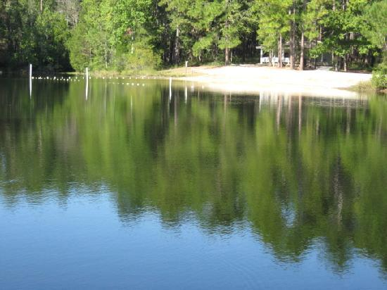Chipley (FL) United States  city photos gallery : Walkways Picture of Falling Waters State Park, Chipley TripAdvisor