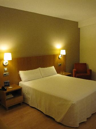 Hotel Palacio de Aiete: basic but spacious room