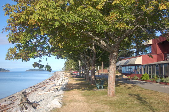 The Driftwood Inn