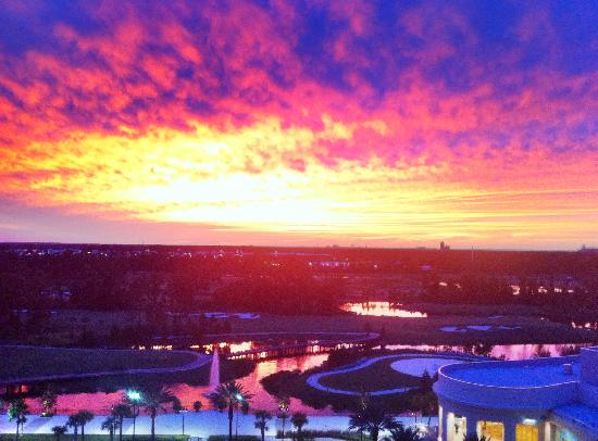 Waldorf Astoria Orlando: Firey Sunset from 11th Floor