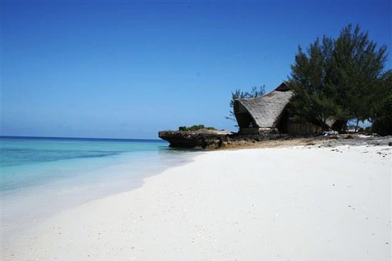 Photo of Chumbe Island Coral Park Zanzibar