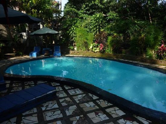 Tiing Gading Bungalows: Pool