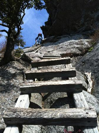 Linville, NC: Steep Ladders To The Top